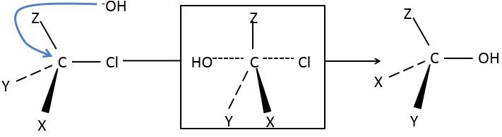 SN2dorsal