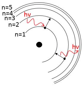 orbites