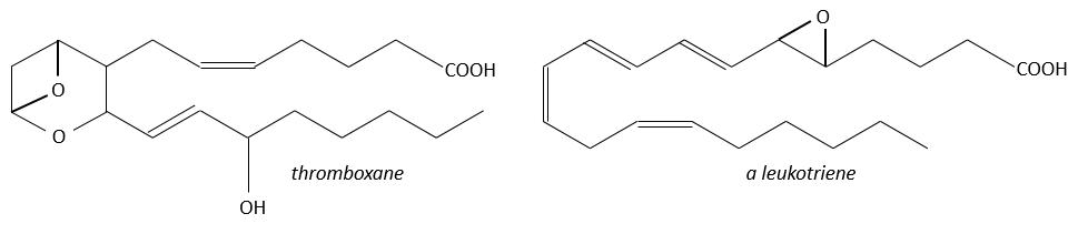 bioc26