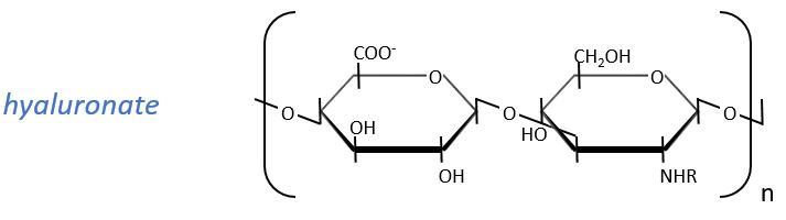 bioc40