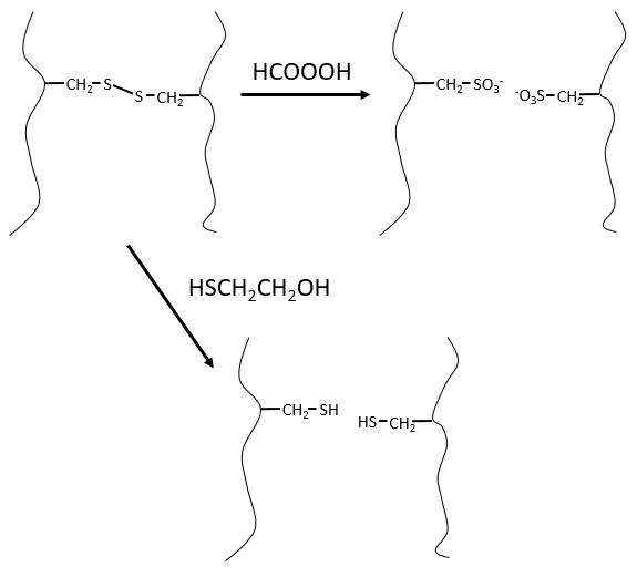 bioc52