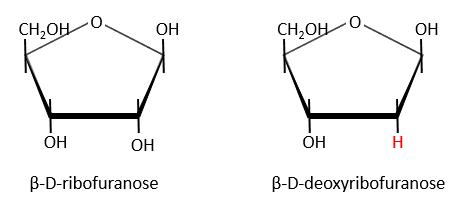 bioc70