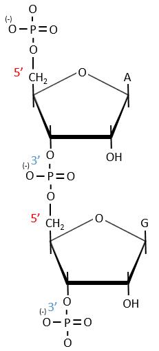 bioc78